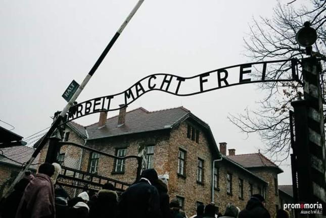 Auschwitz andata e ritorno